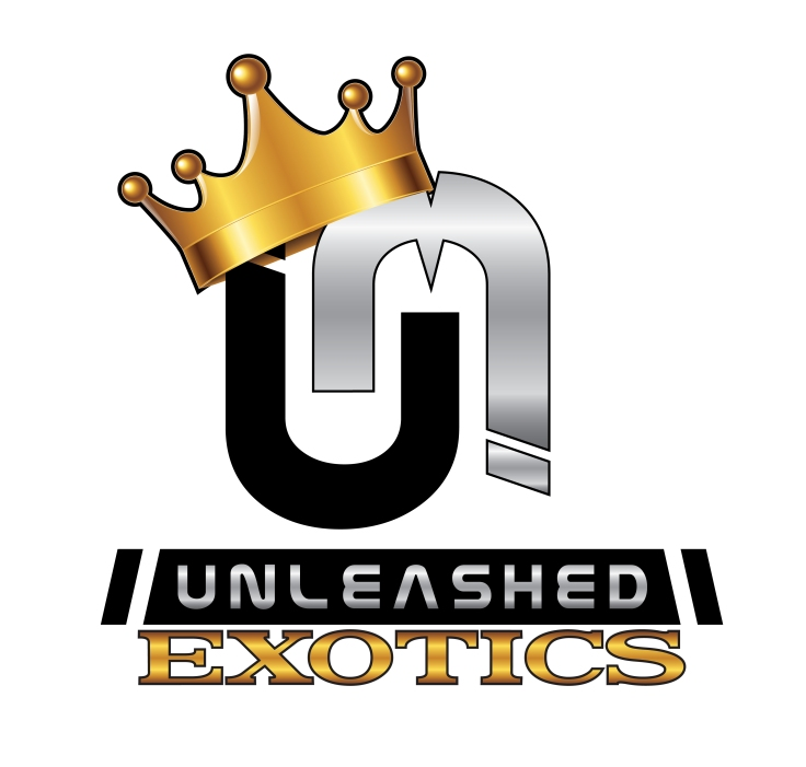 Unleashed Motorsports exotic logo 2 2019-02